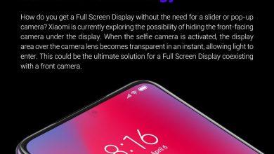 In Display Camera